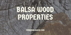 Balsa Wood Properties, Uses and Advantages