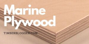 Marine Plywood Advantages And Disadvantages