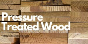 What is Treated Wood? Its Advantages and Disadvantages
