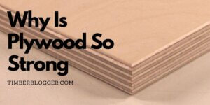 Why Is Plywood So Strong Compared To Others?