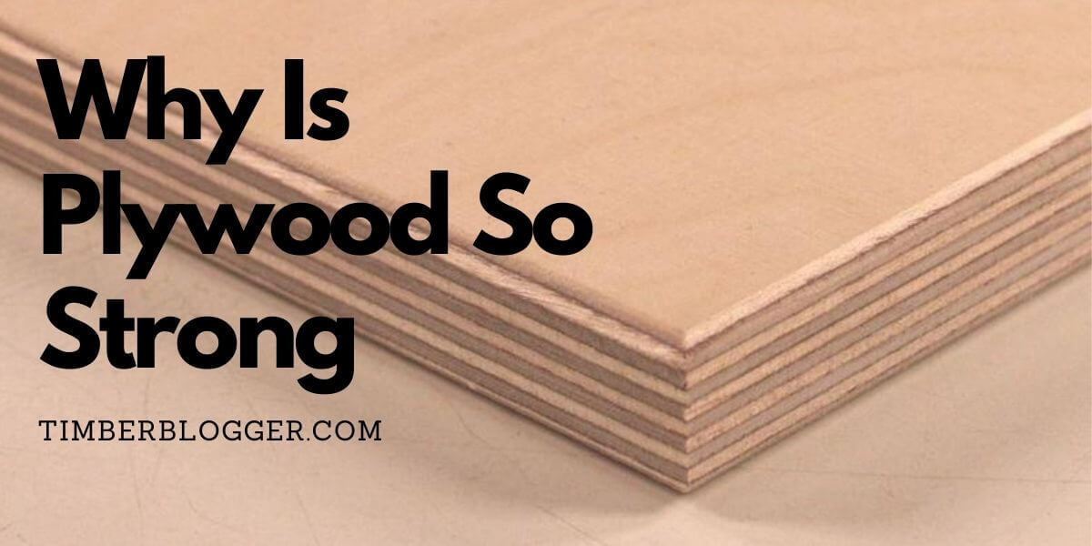 Why Is Plywood So Strong