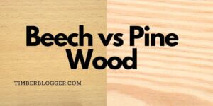 Beech vs Pine Wood | Which is Best for Your Furniture?